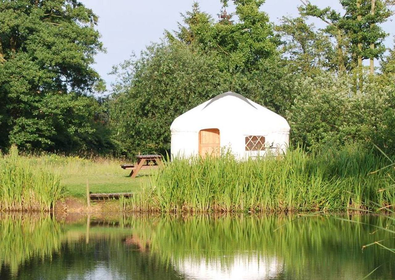 Acorn Glade in Yorkshire where Daisy and Poppy Yurt found a new home.