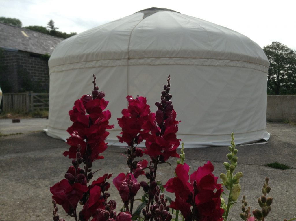 Fron Farm Yurts-Wooden Roundhouses and Yurts for Sale-Gallery