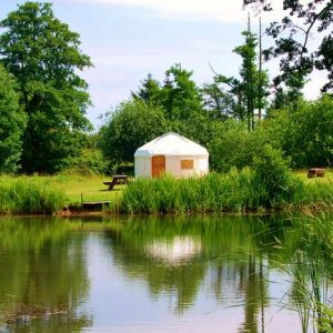Fron Farm Yurt at Acorn Glade