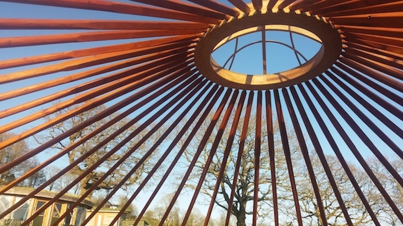 Yurt roof at Fron Farm Yurts Wales